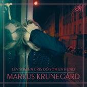 Lev som en gris dö som en hund by Markus Krunegård