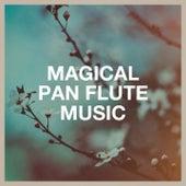 Magical Pan Flute Music by Damian Luca, Damian Draghici, The Eireann Players, Michel Stockhem, Ralph Benatar, The Mayfair Symphony Orchestra, Francis Goya, Orchestra, Gheorghe Zamfir