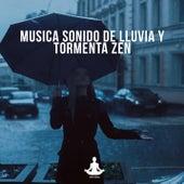 Musica sonido de lluvia y tormenta zen de Vida Sana
