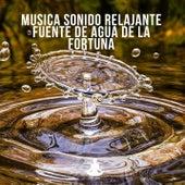 Musica sonido relajante fuente de agua de la fortuna de Vida Sana