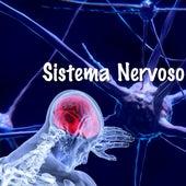 Sistema Nervoso fra Bvg