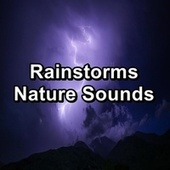 Rainstorms Nature Sounds by Calming Sounds