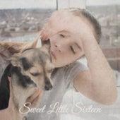 Sweet Little Sixteen by Various Artists