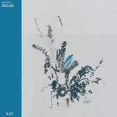Time Will Tell (Taroug Remix) von Jules Ahoi
