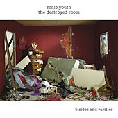 The Destroyed Room de Sonic Youth