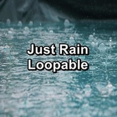 Just Rain Loopable by Rain Sounds and White Noise
