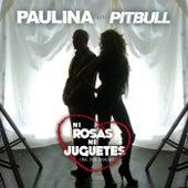 Ni Rosas, Ni Juguetes (Dúo Con Pitbull - Mr 305 Remix) de Paulina Rubio
