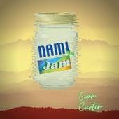 N.A.M.I. Is My Jam de Evan Curtin