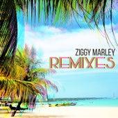 Remixes von Ziggy Marley