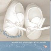 Baby unterwegs! von Various Artists