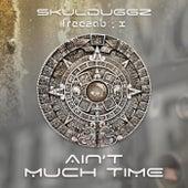 Ain't Much Time by Skulduggz