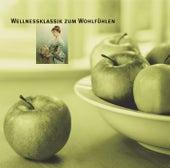 Wellnessklassik zum Wohlfühlen by Various Artists