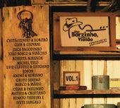 Um barzinho, um violão sertanejo (Ao vivo) de Various Artists