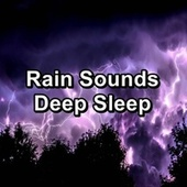 Rain Sounds Deep Sleep by Sounds Of Nature