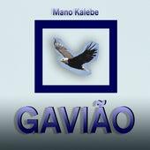 Gavião by Mano Kalebe