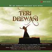 Teri Deewani by Various Artists