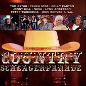 Country Schlagerparade de Various Artists