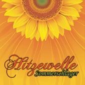 Hitzewelle (Der Schlager Sommer) von Various Artists