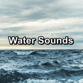 Water Sounds de Nature Sound Collection