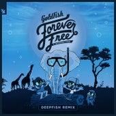 Forever Free (DeepFish Remix) de Goldfish