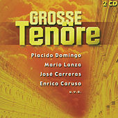 Große Tenöre by Various Artists