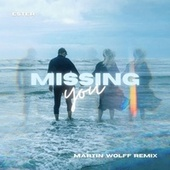 Missing You (Martin Wolff Remix) by Ester