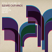 Soul Culture: 03 Elevate Our Minds Metro Radical Beats de Various Artists