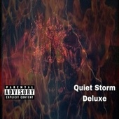 Quiet Storm Deluxe by Jay Prince