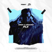 Fly by Aren
