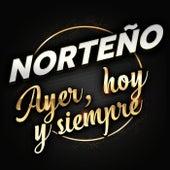Norteño Ayer, Hoy Y Siempre de Various Artists