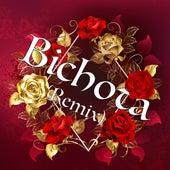 Bichota (Remix) de Gonzalo DJ