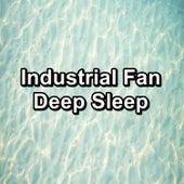 Industrial Fan Deep Sleep by White Noise Babies