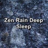 Zen Rain Deep Sleep by Sleep Sound Library