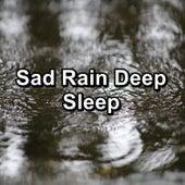 Sad Rain Deep Sleep by White Noise Baby Sleep (1)