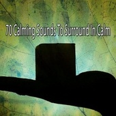 70 Calming Sounds to Surround in Calm de White Noise Research (1)