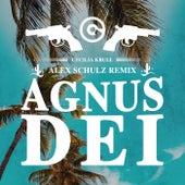 Agnus Dei (Alex Schulz Remix) by Cecilia Krull
