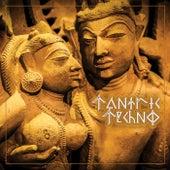 Tantric Techno von Various Artists