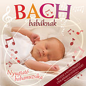 Bach Babáknak de Various Artists
