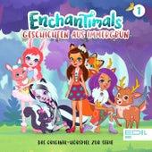 Folge 1: Die Super-Duper-Zaubermaschine / Danessas Liebling (Das Original-Hörspiel zur TV-Serie) von Enchantimals