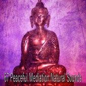 67 Peaceful Mediation Natural Sounds de White Noise Research (1)