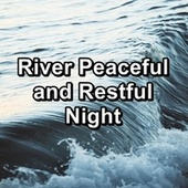 River Peaceful and Restful Night van Beach Sounds