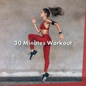 30 Minutes Workout van Various Artists