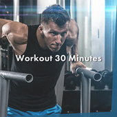 Workout 30 Minutes de Various Artists