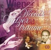 Wiener Walzerträume by Various Artists