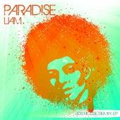 Paradise (80s House Remix EP) de Liam