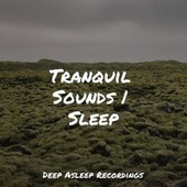 Tranquil Sounds | Sleep by Sleeping Baby Songs