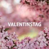 VALENTINSTAG by Various Artists