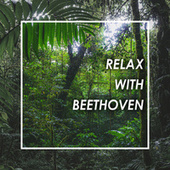 Relax with Beethoven by Ludwig van Beethoven