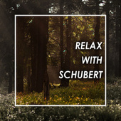 Relax with Schubert by Franz Schubert