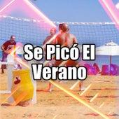 Se Picó El Verano by Various Artists
